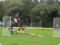 Dressage, Games and Freshmans SJ Rally